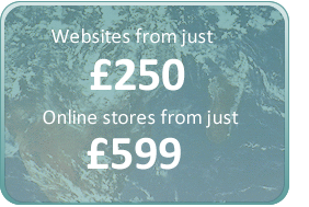 web sites from 250 online stores from 500